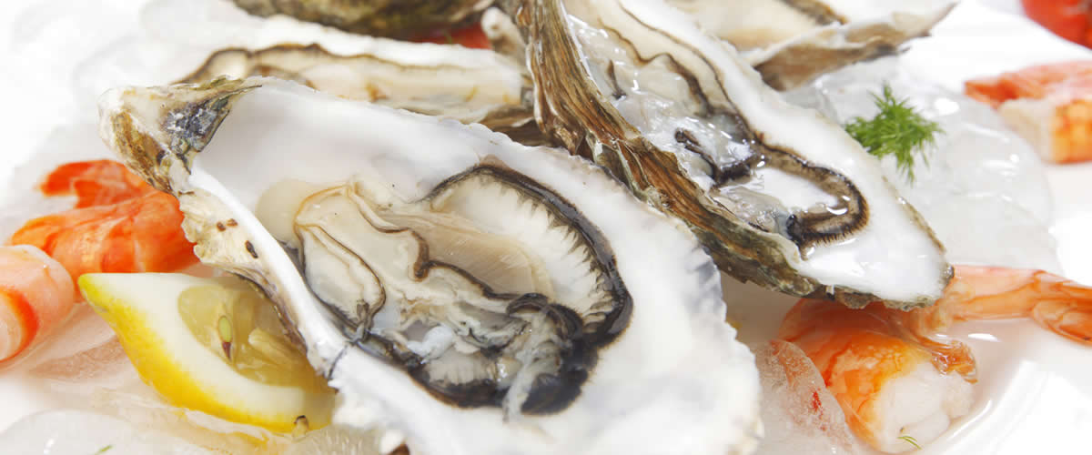 Fresh Seafood Wholesale | UK Delivery available